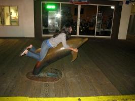 Santa Monica dolphin