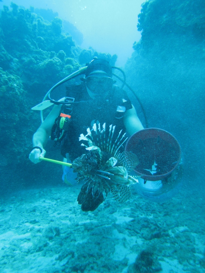 Lionfish hunting (photo by P. Andrew Och)