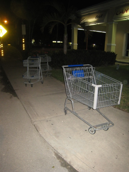 Shopping carts (photo by P. Andrew Och)