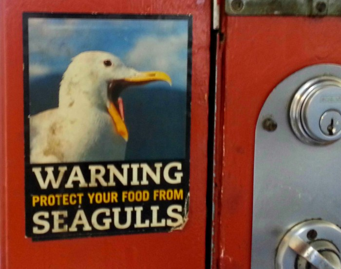 Seagulls sign at Granville Island