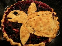 Sea turtle berry pie