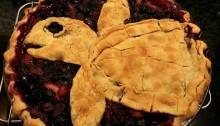 Sea turtle berry pie