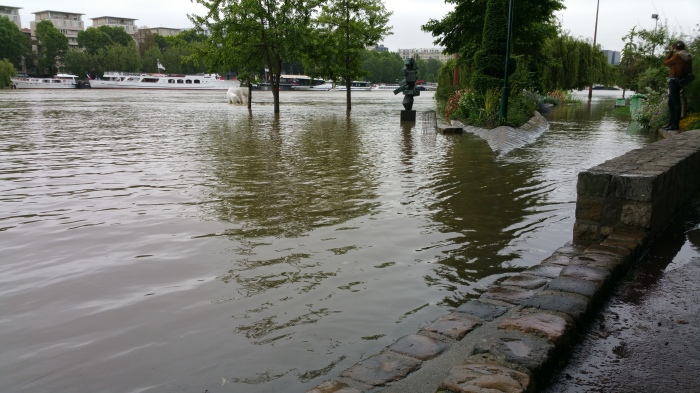 Seine River, Paris, flood, flooding, art, park, garden