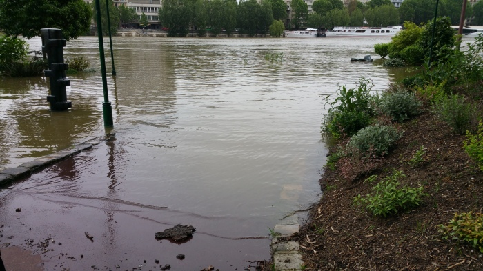 Seine River, Paris, flood, flooding, garden, park, art