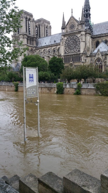 Seine River, Paris, flood, flooding, Notre Dame