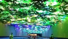Atlanta airport forest exhibit
